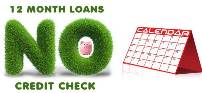 12-month-loans-no-credit-check